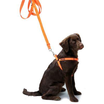 Hundegeschirr Orange Größe S